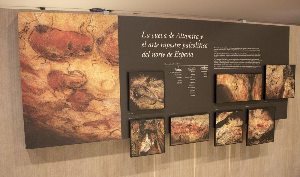 Detalle museo de Altamira