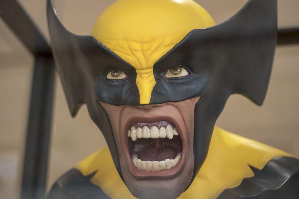 Detalle Wolverine