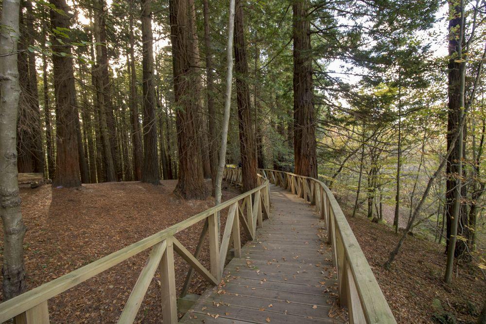 Vista general de acceso al parque